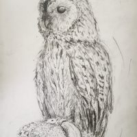 Day 22 - Taxidermy Owl with Mouse