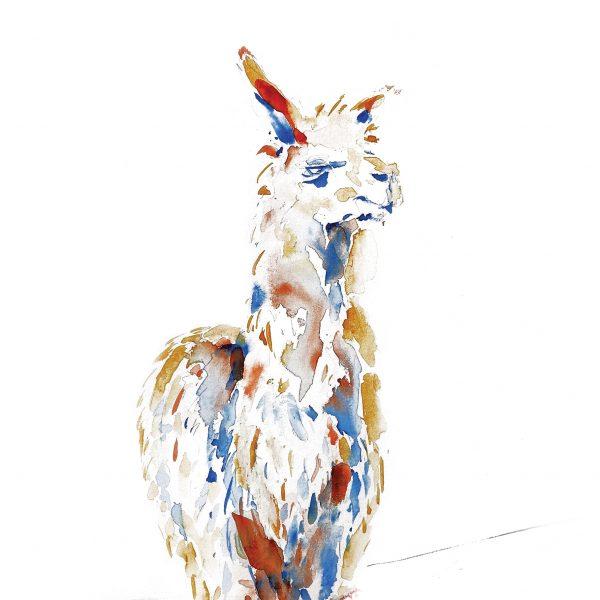 cusco-alpaca-watercolour-illustrated-greetings-card-matt-witt-illustration