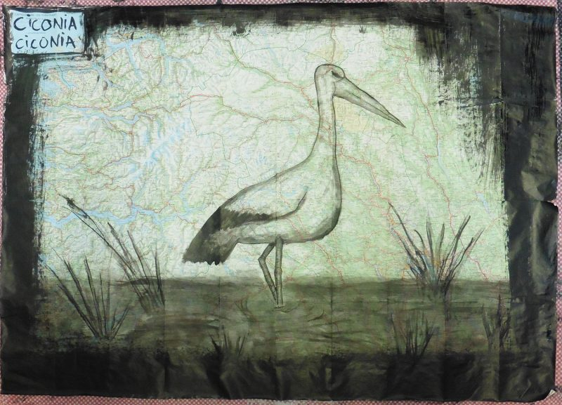 Luis Elvira - Stork