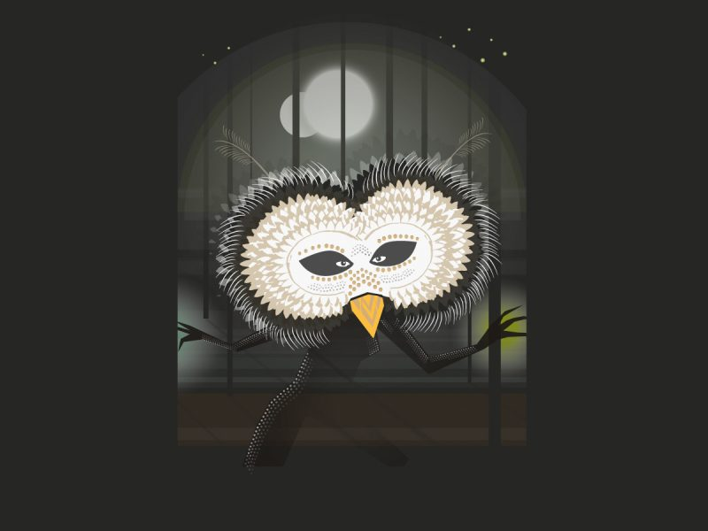 Owl - For Artful Badger