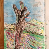 Day 13 - The Original Glastonbury Thorn ( sadly vandalised)