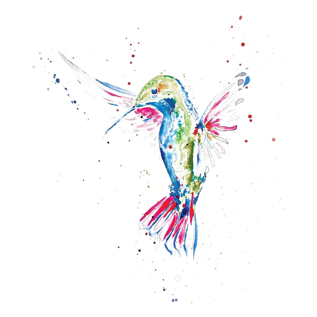 Andean hummingbird illustrated watercolour greetings card wake andean hummingbird illustrated watercolour greetings card m4hsunfo