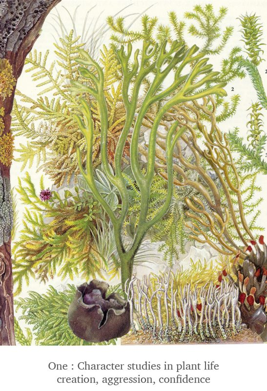 One - Plant Life - Scissor Snaps