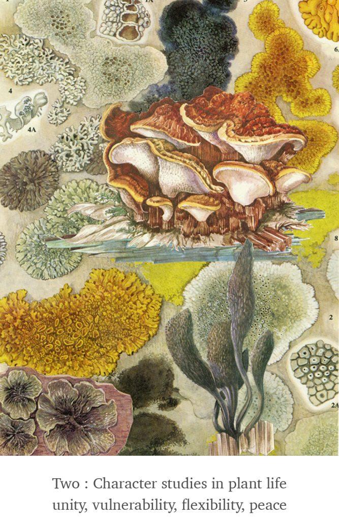 Two - Plant Life - Scissor Snaps